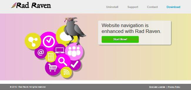 Rad Raven