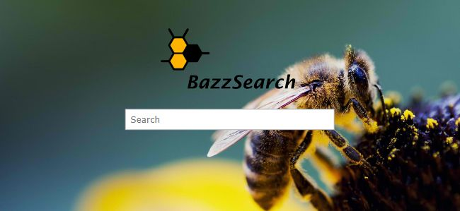 bazzsearch.com