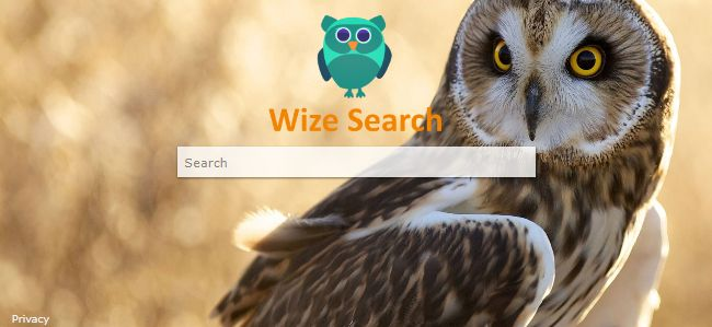 Wizesearch.com