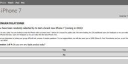 Apples.server-info.xyz