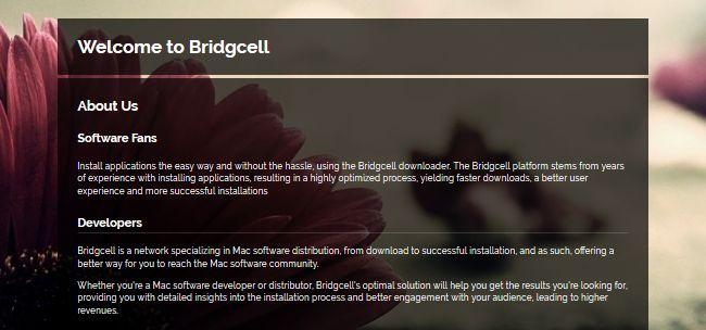 Bridgcell