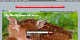 MyDailySearch.com