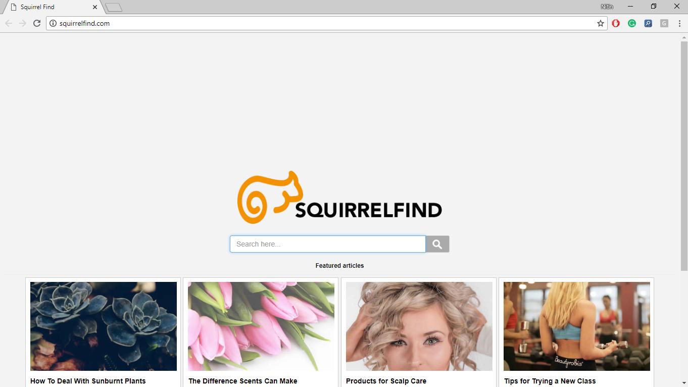 How to Remove Squirrelfind.com