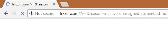 Search Hijacker Trkzur.com Redirect