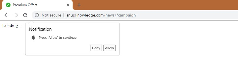 How to remove Snugknowledge.com Redirect